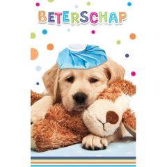 beterschapskaart - beterschap - hond en knuffel