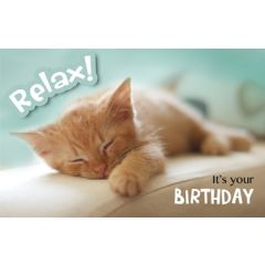 verjaardagskaart - it is your birthday - kitten