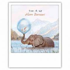 ansichtkaart instagram pickmotion - live it up happy birthday - olifant en goudvissen
