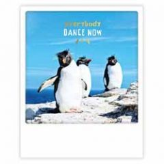 ansichtkaart instagram pickmotion - everybody dance now - pinguins