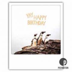 ansichtkaart instagram pickmotion - yay happy birthday - pinguins
