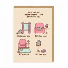 wenskaart pusheen - do-it-yourself home decor tips (from your cat)