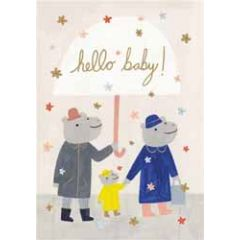 geboortekaartje roger la borde - hello baby