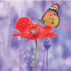 wenskaart second nature - rode bloem met vlinder