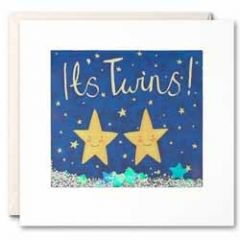 geboortekaart  shakies - it is twins (tweeling)