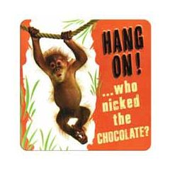 tinnen magneet - hang on! ...who nicked the chocolate - aapje