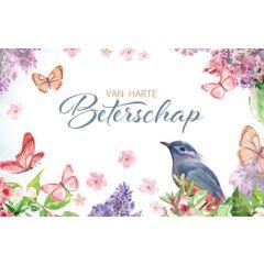 wenskaart - van harte beterschap - vogel en vlinders