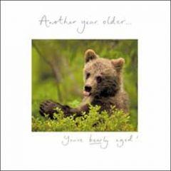 verjaardagskaart woodmansterne - another year older... you've bearly aged - beer