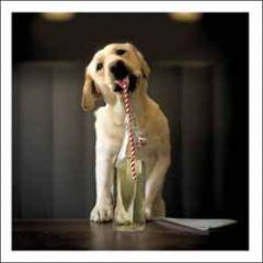 wenskaart woodmansterne - hondje met flesje drinken