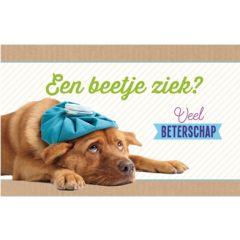 beterschapskaart - een beetje ziek  veel beterschap - hond