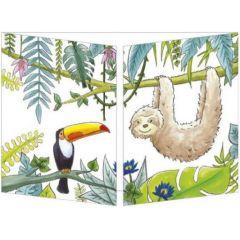 uitklapbare wenskaart cache-cache - toekan en luiaard in jungle