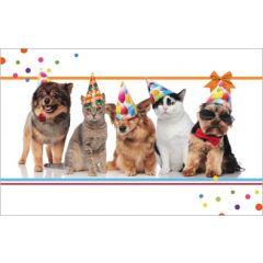 felicitatiekaart - katten en honden met feestmuts
