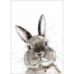 wenskaart cath ward - konijn