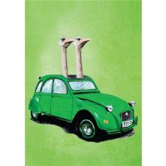 wenskaart coco de paris - twee struisvogels in een auto