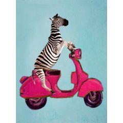 wenskaart coco de paris - zebra