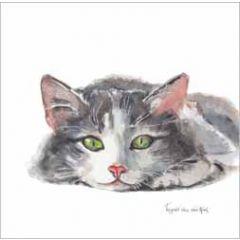 wenskaart - kat