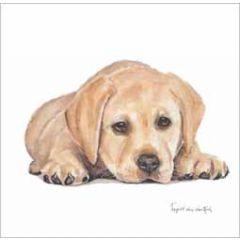 wenskaart - hond