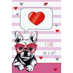 wenskaart - i like you a lot! - hond