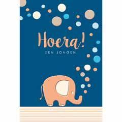 geboortekaart goldfever - hoera een jongen - olifant