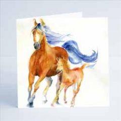 wenskaart sheila gill - paarden