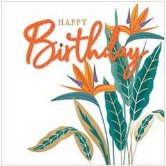 verjaardagskaart second nature - happy birthday