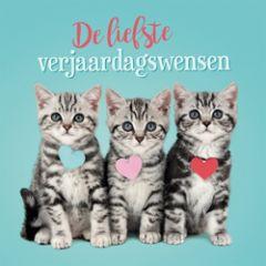 wenskaart 3D - studio pets - de liefste verjaardagswensen - kittens