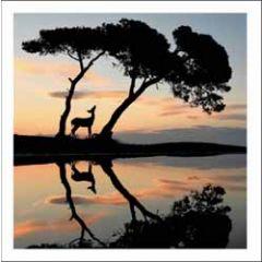 wenskaart woodmansterne - hert onder bomen
