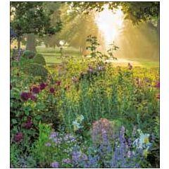 8 wenskaarten woodmansterne - tuin met zon