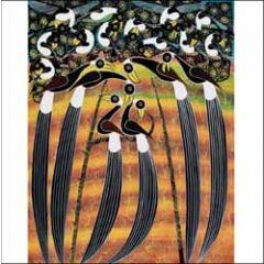 wenskaart woodmansterne - vogels - the tree of life