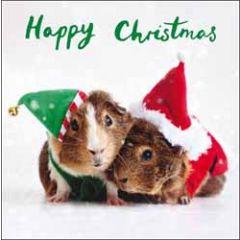 5 kerstkaarten woodmansterne - happy christmas - cavia's