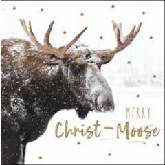 5 kerstkaarten woodmansterne - merry christ-moose - rendier