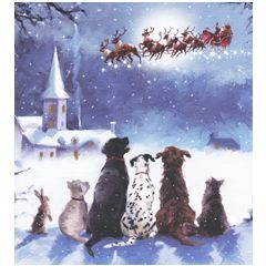 8 luxe kerstkaarten woodmansterne - honden kijken naar arrenslee   muller wenskaarten