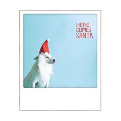 kerstansichtkaart instagram - here comes santa - hond