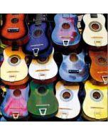 verjaardagskaart woodmansterne - in tune - gitaar