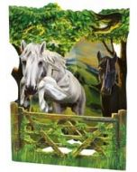 3D kaart - swing cards - paarden
