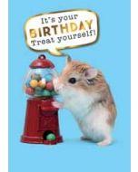 verjaardagskaart - it is your birthday treat yourself! - hamster