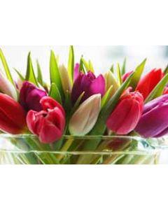 ansichtkaart - tulpen in vaas