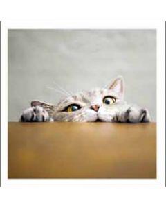 wenskaart woodmansterne - kat kijkt over tafel