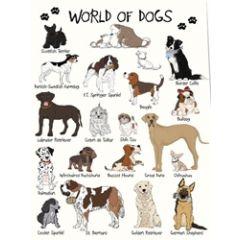 wenskaart mouse & pen - world of dogs (voor de hondenliefhebber)