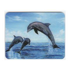 3D koelkastmagneet - dolfijnen