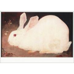 ansichtkaart  - wit konijn - jan mankes