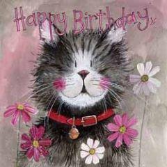 verjaardagskaart alex clark - happy birthday x - kat
