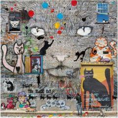 vierkante ansichtkaart met envelop - maïlo - katten