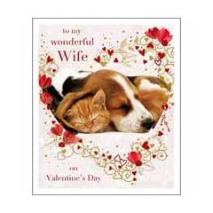 grote valentijnskaart woodmansterne - to my wonderful wife on valentine's day - kat en hond