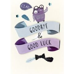 grote wenskaart A4 - goodbye and good luck - uil
