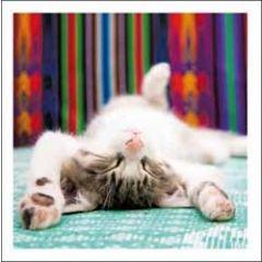 wenskaart woodmansterne - slapende kitten