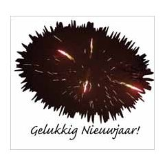10 nieuwjaarskaarten - gelukkig nieuwjaar! - vuurwerk