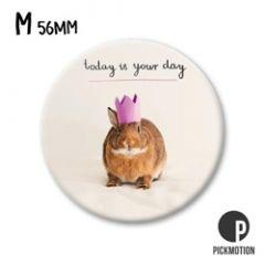 koelkastmagneet pickmotion - today is your day - konijn
