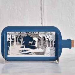 3D pop up kaart - message in a bottle - meisje in bos