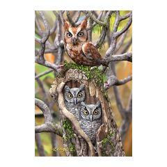 3d ansichtkaart - lenticulaire kaart - uilen